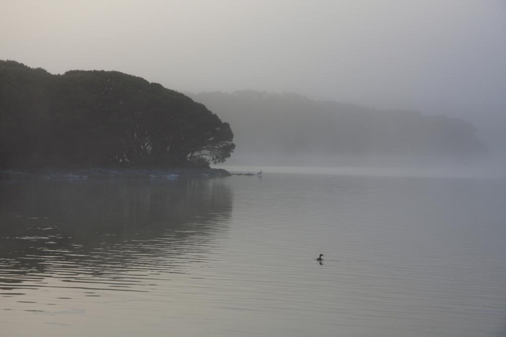 Lake Fellmongery